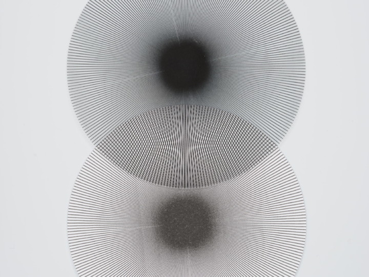 Carmina Blank | Gestaltwandel